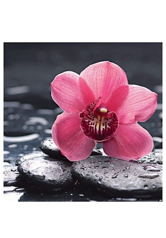 Home affaire Glasbild »Still life with pepple and macro of orchid with water drops«,... kaufen