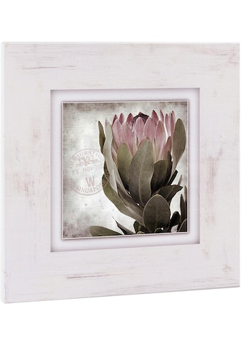 Home affaire Holzbild »Blüte«, 40/40 cm kaufen