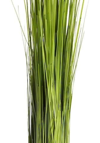 Botanic-Haus Kunstgras »Grasarrangement selbststehend« kaufen
