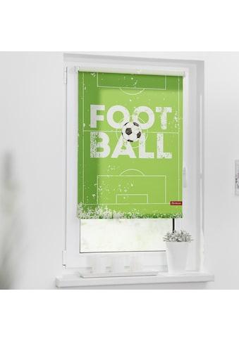 LICHTBLICK ORIGINAL Seitenzugrollo »Rollo Klemmfix, ohne Bohren, blickdicht, Football... kaufen