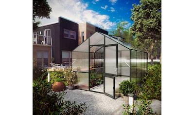 KGT Gewächshaus »Lilie IV«, (mit Regenrinne) kaufen