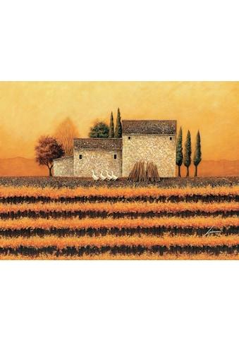 DELAVITA Kunstdruck »HERRERO / Weinberg im Herbst«, (auf Leinwand 80/3,5/60 cm) kaufen