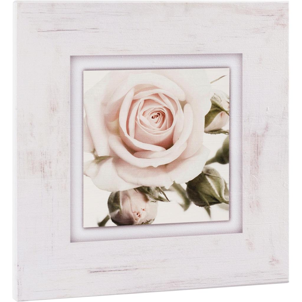 Home affaire Holzbild »Hellrosa Rosenblüte«, 40/40 cm