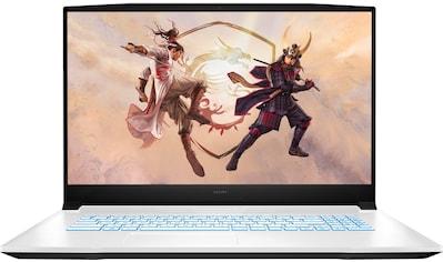 MSI Notebook »Sword 17 A11UC-240«, (512 GB SSD) kaufen