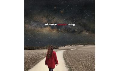 Musik-CD »Scorpio Rising / Triosence« kaufen