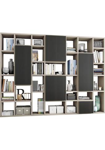 fif möbel Raumteilerregal »TORO 520-3«, Breite 295 cm kaufen