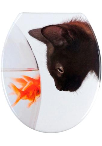 WENKO WC-Sitz »Fish & Cat« kaufen