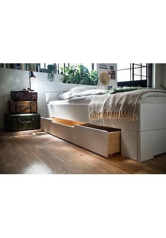 Home affaire Schubkasten-Unterbau »Progress«, aus massivem Fichtenholz, in verschiedenen kaufen