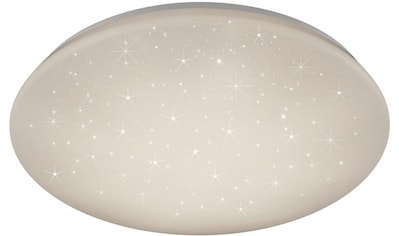 TRIO Leuchten LED Deckenleuchte »JENNY«, LED-Board, LED Deckenlampe kaufen
