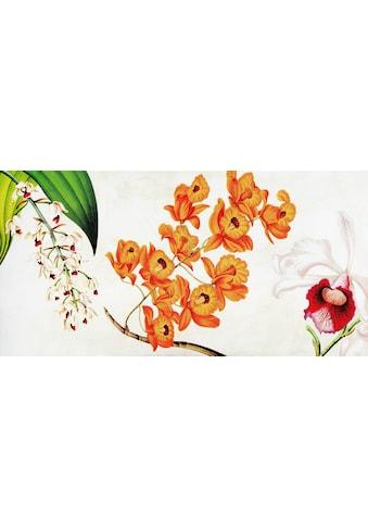 DELAVITA Deco-Panel »REMY DELLAL / Botanik II«, (100/3/50 cm) kaufen