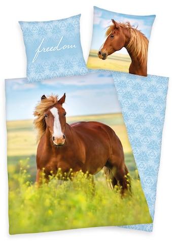 Herding Young Collection Kinderbettwäsche »Freedom«, mit Motiv kaufen