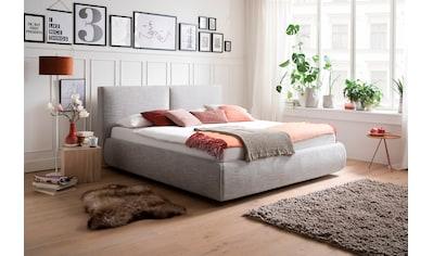 meise.möbel Polsterbett, Wahlweise mit Lattenrost, Matratze und Bettkasten kaufen