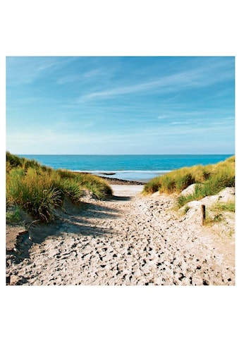 Home affaire Glasbild »Beach with sand dunes and a path to the sea«, 30/30 cm kaufen