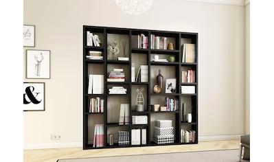 fif möbel Raumteilerregal »TORO 382«, Breite 214 cm kaufen