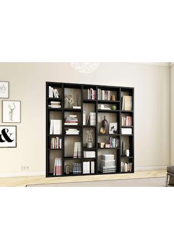 Raumteilerregal »TORO 382«, Breite 214 cm kaufen