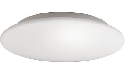FISCHER & HONSEL Deckenleuchte »Blanco«, E14 kaufen