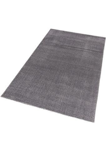 Hochflor - Teppich, »Savona 180«, ASTRA, rechteckig, Höhe 20 mm, maschinell gewebt kaufen