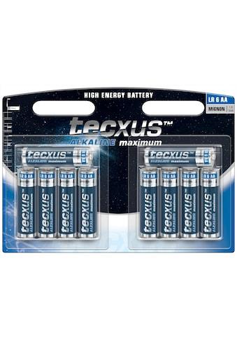 tecxus Batterie »mit langer Lebensdauer«, (Packung), 10er Pack Mignon LR6 / AA... kaufen