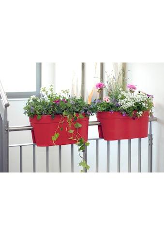KHW Pflanztopf »Flowerclip XL«, 2 Stk., rot kaufen