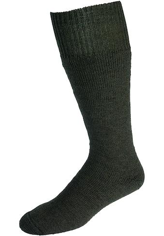 Socken »Vollplüsch«, (Set, 2 Paar), grün kaufen