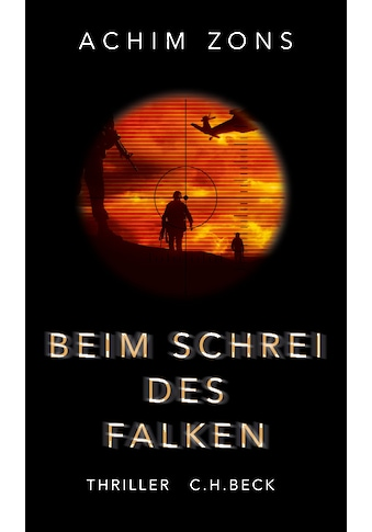 Buch »Beim Schrei des Falken / Achim Zons« kaufen