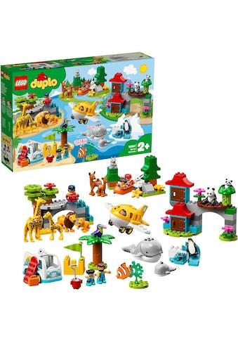 """LEGO® Konstruktionsspielsteine """"Tiere der Welt (10907), LEGO® DUPLO®"""", Kunststoff, (121 - tlg.) kaufen"""