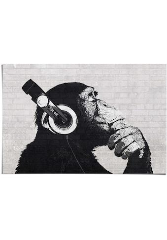 Reinders! Poster »Poster Schimpanse Wand«, Affen, (1 St.) kaufen