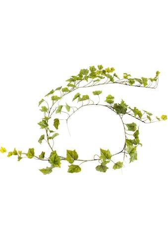 Botanic-Haus Künstliche Zimmerpflanze »Weinlaubgirlande« kaufen