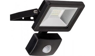 Goobay LED Außen - Flutlichtstrahler »mit Bewegungsmelder 10 W« kaufen