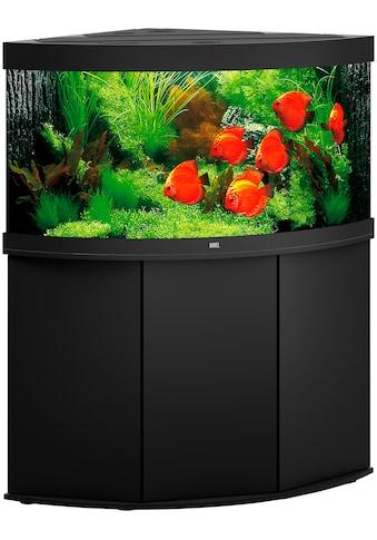 JUWEL AQUARIEN Aquarien-Set »Trigon 350 LED + SBX Trigon 350«, BxTxH: 123x87x138 cm,... kaufen