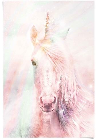 Reinders! Poster »Poster Magisches Einhorn Farbenfroh - Fantasie - Pferd«, Einhorn, (1... kaufen
