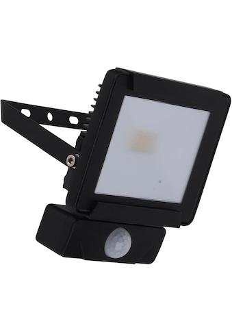 näve LED Außen-Wandleuchte »STRAHLER«, LED-Board, Kaltweiß, inkl. Bewegungssensor kaufen