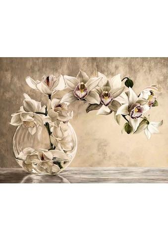 Home affaire Kunstdruck »REMY DELLAL/Orchideen Vase«, (1 St.) kaufen