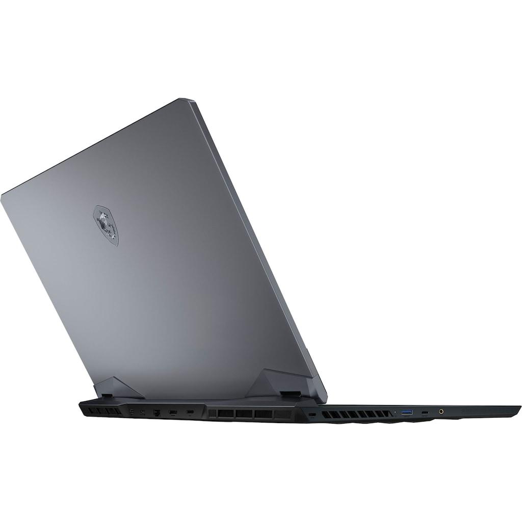 MSI Gaming-Notebook »GE76 Raider 10UG-289«, ( 1000 GB SSD)