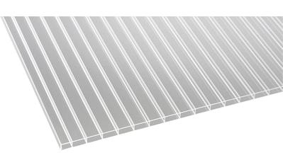 GUTTA Doppelstegplatte »GUTTACRYL«, Acryl Hohlkammerplatte 16 mm, BxL: 98x200 cm kaufen
