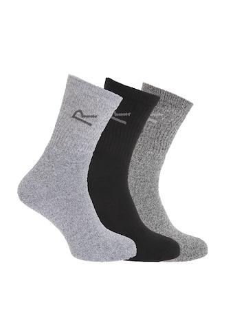Regatta Socken »Great Outdoors Herren, 3er-Pack« kaufen