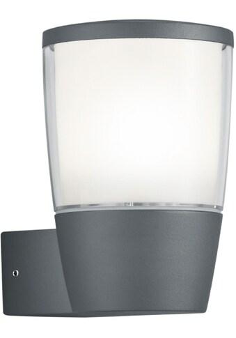 TRIO Leuchten LED Außen-Wandleuchte »SHANNON« kaufen