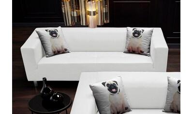 COLLECTION AB 3-Sitzer, mit 2 lustigen Hunde-Zierkissen, frei im Raum stellbar kaufen