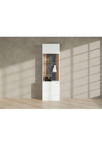 set one by Musterring Vitrine »TACOMA«, Typ 01, Höhe 207, 4 cm, mit getönter Glastür kaufen