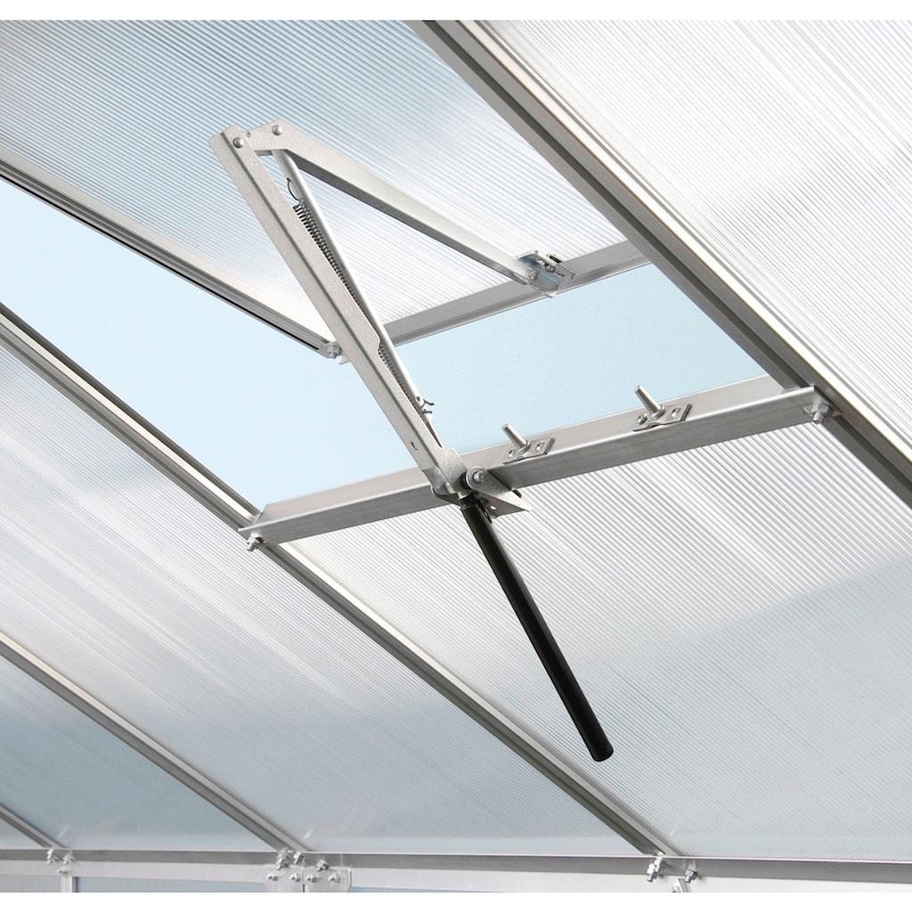 Vitavia Gewächshaus »Diana 9900«, (Komplett-Set, mit 3-tlg. Zubehör)