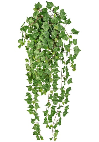 Creativ green Kunstranke »Englische Efeuranke« kaufen