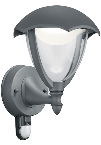 TRIO Leuchten LED Außen-Wandleuchte »GRACHT« kaufen