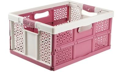 keeeper Klappbox »lea«, (1 tlg.), Aus hochwertigem Kunststoff kaufen