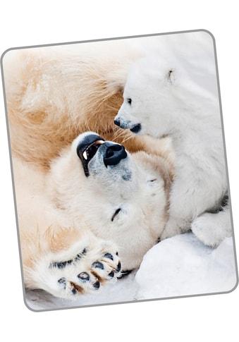 Wohndecke »Cute Bear«, good morning kaufen