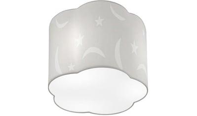 TRIO Leuchten Deckenleuchte »MOONY«, E27, Deckenlampe kaufen