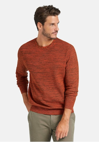 Louis Sayn Rundhalspullover »Pullover« kaufen