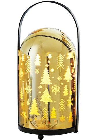 LED Laterne »Shine«, Warmweiß, mit 10 warmweißen LEDs, Höhe 23,5 cm kaufen