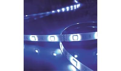 Brilliant Leuchten Light Strip LED - Streifen 5m bunt Tuya - App kaufen