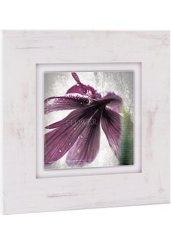 Home affaire Holzbild »Lila Blüte I«, 40/40 cm kaufen