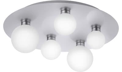 TRIO Leuchten,LED Deckenleuchte»DICAPO«, kaufen